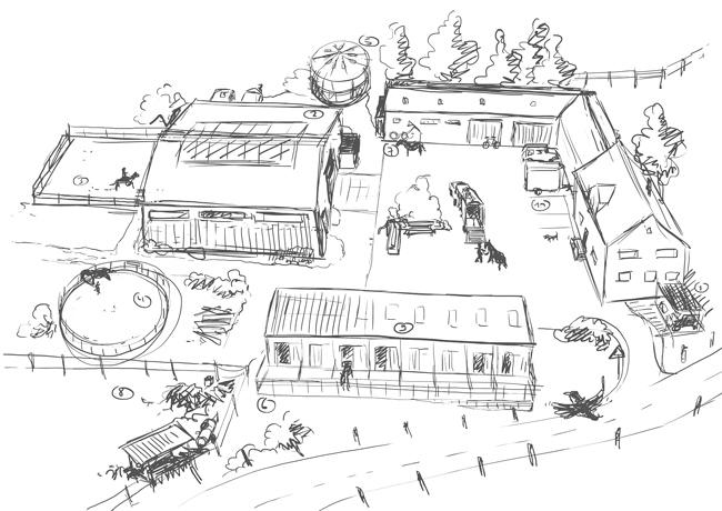 Illustration, Reiterhof, Purus, ecora, Zeichnung, Bild, Vogelperspektive, Tusche, digital, Reitsport, Bauernhof